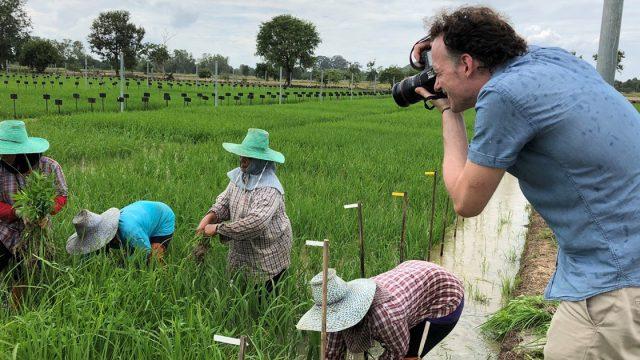 Chainat Farmers pay less with greenhouse gas reduction farming method