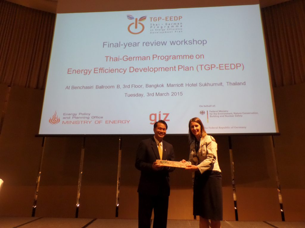 Final-Year Review Workshop of TGP-EEDP Project
