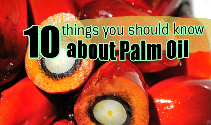 10 things you should know about 'Palm Oil'